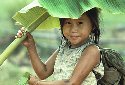 Photograph - Banana Leaf Umbrella In Laos by Carl Purcell