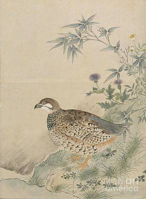 American Painting - Birds Of Japan In The 19th Century by Celestial Images