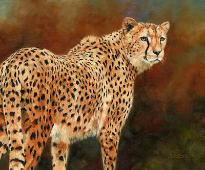 Cheetah Painting - Cheetah by David Stribbling