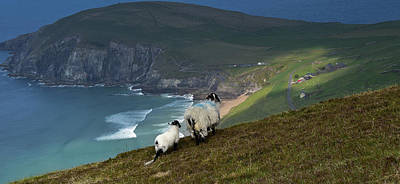 Photograph - Coumeenole by Barbara Walsh