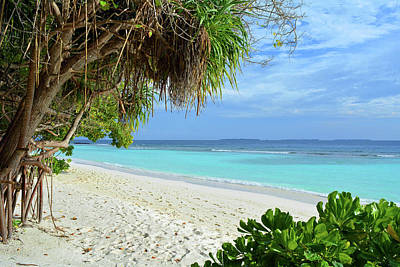 Photograph - Exotic Island In The Maldives by Oana Unciuleanu