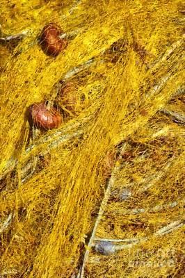 Nets Painting - Fishing Nets by George Atsametakis