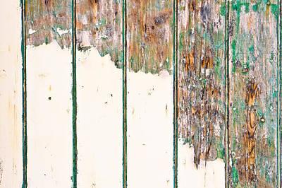 Green Wood Art Print