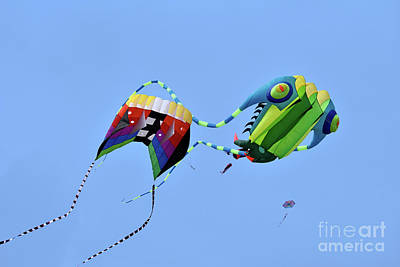 Photograph - Kites Flying During Kite Festival by George Atsametakis