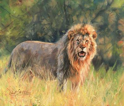 Wildlife Landscape Painting - Lion by David Stribbling