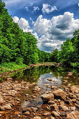 Photograph - Williams River  by Thomas R Fletcher