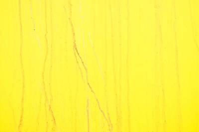 Yellow Metal Art Print by Tom Gowanlock