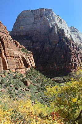 Zion National Park In Autumn Art Print by Pierre Leclerc Photography