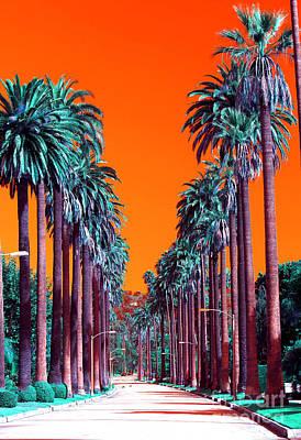 Photograph - 90210 by John Rizzuto