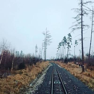 Instagram Photo Original