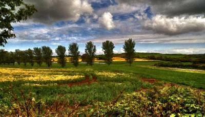 Summer Digital Art - Landscape Jobs by Victoria Landscapes