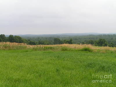 Photograph - #940 D1098 Farmer Browns West Newbury by Robin Lee Mccarthy Photography