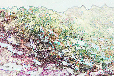 9708 Art Print by Jim Simms