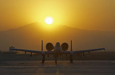 Nato Photograph - A-10 Warthog by Tim Grams