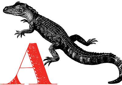 Animal Alphabet Digital Art - A Alligator by Thomas Paul