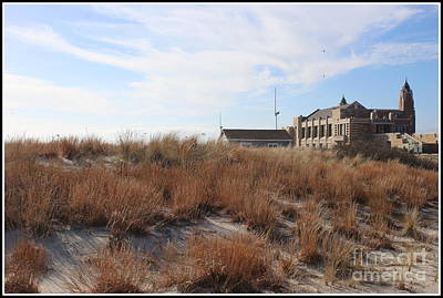 Photograph - A Balmy Winter Day At Jones Beach by Dora Sofia Caputo Photographic Art and Design