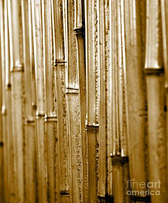 A Bamboo Wall Art Print