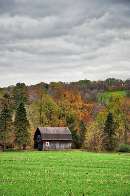 Photograph - A Barn In Autumn by Guy Whiteley