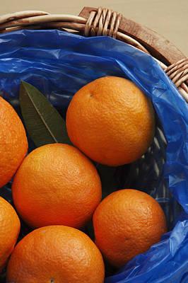 A Basket Of Oranges Art Print by Steve Outram