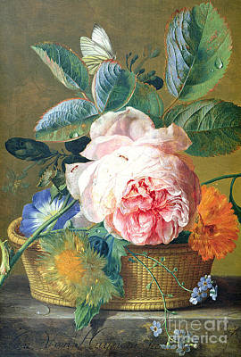 Dew Painting - A Basket With Flowers by Jan van Huysum