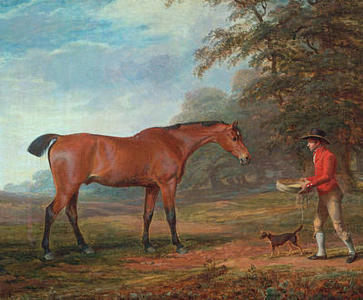 Painting - A Bay Horse Approached By A Stable-lad With Food And A Halter by George Garrard