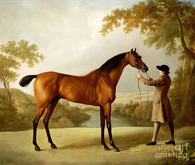 River View Painting - A Bay Racehorse Held By A Groom In An Extensive Landscape by George Stubbs
