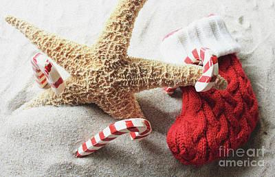 Photograph - A Beachy Christmas by Mary Haber