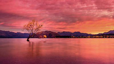 Aotearoa Photograph - A Beautiful Autumn Sunrise by Kumar Annamalai