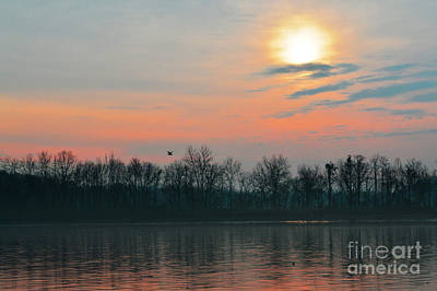 Photograph - A Beautiful Morning At The Delaware River by Robyn King