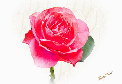 Digital Art - A Beautiful Red Rose For Christmas by Rusty R Smith