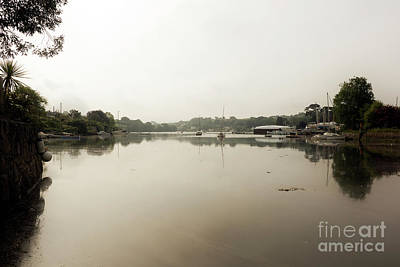 Photograph - A Beautiful View Of Misty Mylor Creek by Terri Waters