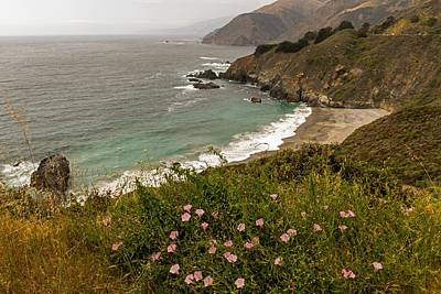 Photograph - A Beautiful View Of The Pch by Willie Harper