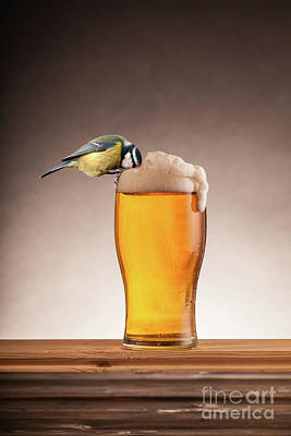 Blue Tit Photograph - A Beer For The Birds by Simon Bratt Photography LRPS
