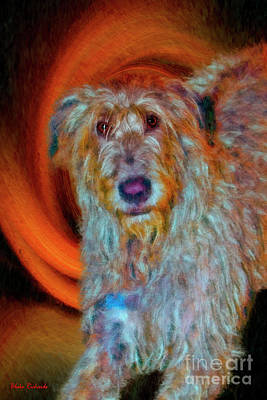 Photograph - A Big Briard by Blake Richards
