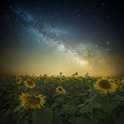 Photograph - A Billion Suns by Aaron J Groen