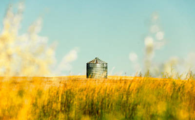 Photograph - A Bin Stands Alone by Todd Klassy