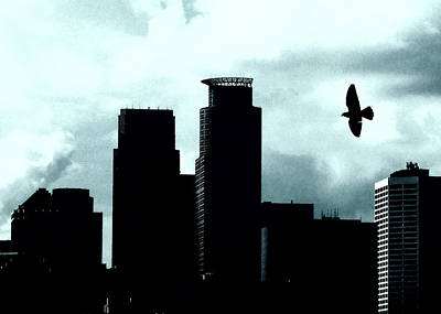 Photograph - A Bird's View Of Minneapolis by Susan Stone