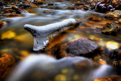 Photograph - A Bit Above Freezing by David Andersen