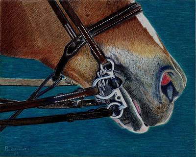 Painting - A Bit Of Control - Horse Bridle Painting by Patricia Barmatz