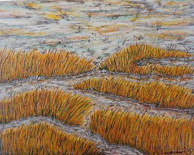 A Bit Of The Pagan River Marsh Print by Don Williams