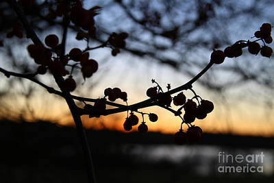 Bittersweet Photograph - A Bittersweet Sunset  by Neal Eslinger