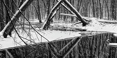 Photograph - A Black And White Panoramic Photo Of A Stream In A Winter Snow Storm In West Michigan by Randall Nyhof