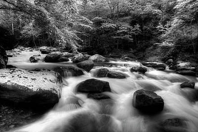 Photograph - A Black And White River by Mike Eingle
