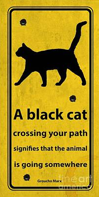 Quote Drawing - A Black Cat Funny Road Quote And Shoot by Pablo Franchi