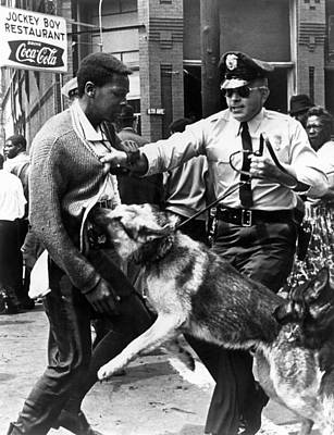Attack Dog Photograph - A Black Man Is Attacked By A Policeman by Everett
