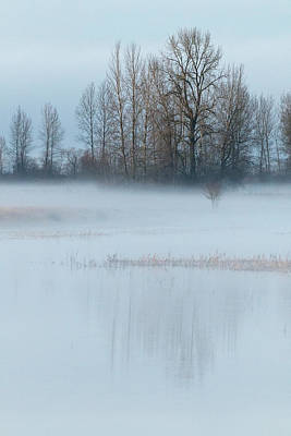 Photograph - A Blanket Of Fog by Angie Vogel