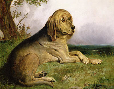 Cats And Dogs Painting - A Bloodhound In A Landscape by English school