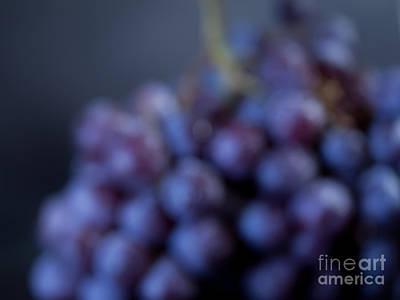 A Blue Bunch Of Grapes Art Print by Patricia Bainter