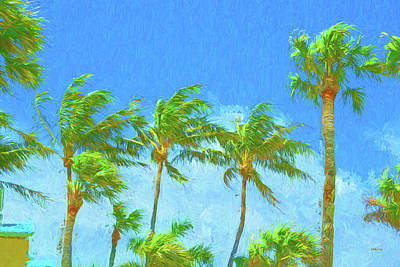 Photograph - A Blustery Tropical Day by John M Bailey