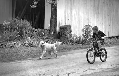 Lucky Dogs Wall Art - Photograph - A Boy And His Dog Bw by Phyllis Taylor